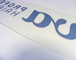 DSCF1481